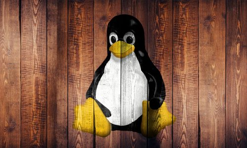 Comando chown in Linux – Acquisire i diritti di cartelle e files